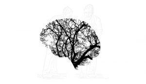 parkinson brain white background
