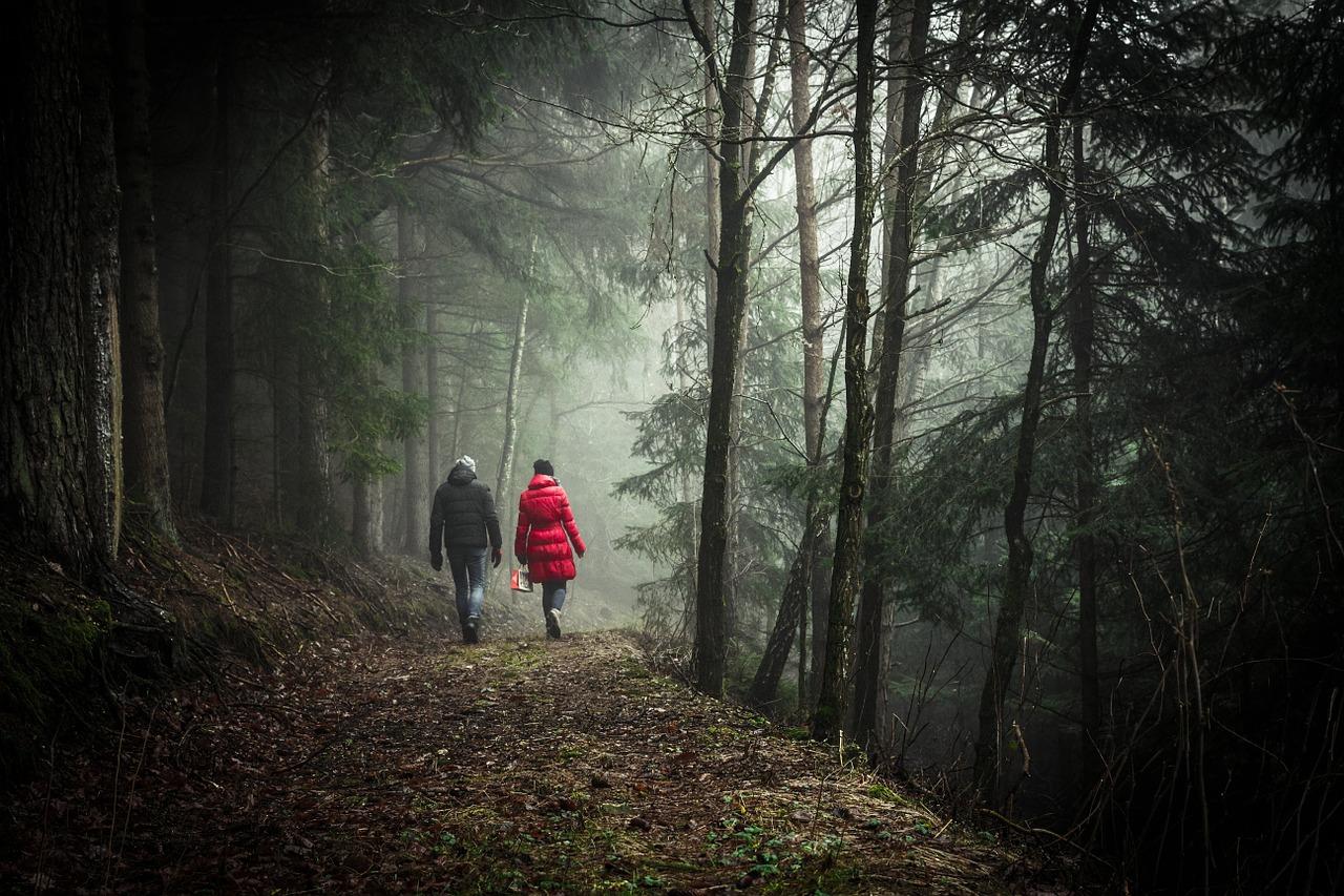 Par som tar promenad i skogen